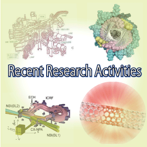 Research Activites